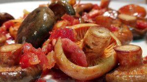 recetas con níscalos - recetas con níscalos - recetas con setas - recetas con rovellones